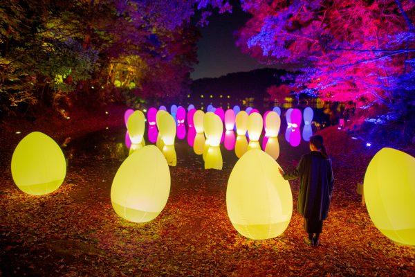 チームラボ 森と湖の光の祭(メッツァビレッジ)2018.12.01 (土) – 2019.3.03 (日)
