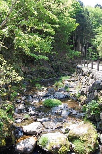 「ここって本当に埼玉?」マイナスイオンたっぷり!夏の名栗へ!